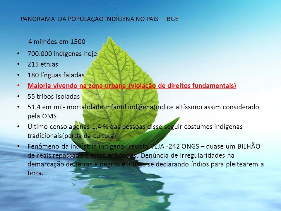 4 milhões em 1500 700.000 indígenas hoje 215 etnias 180 línguas faladas Maioria vivendo na zona urbana (violação de direitos fundamentais) 55 tribos i