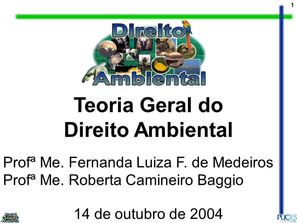 1 Teoria Geral do Direito Ambiental Profª Me. Fernanda Luiza F. de Medeiros Profª Me. Roberta Camineiro Baggio 14 de outubro de 2004