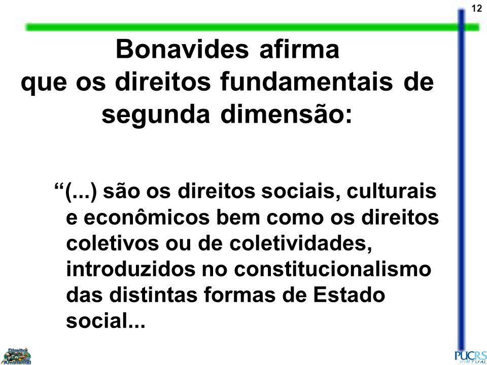 12 (...) são os direitos sociais, culturais e econômicos bem como os direitos coletivos ou de coletividades, introduzidos no constitucionalismo das di