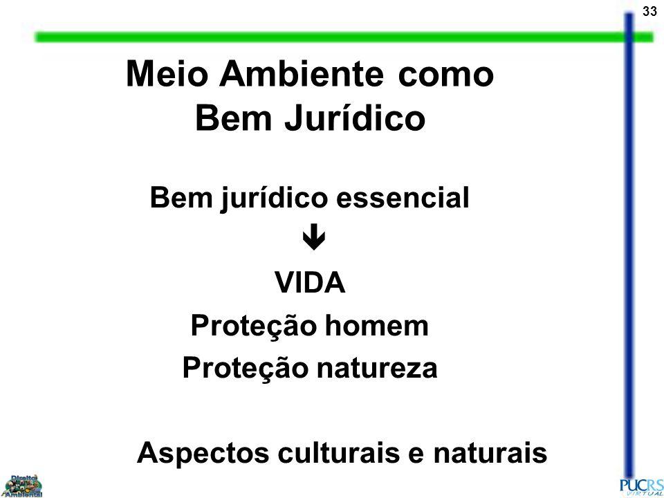 33 Meio Ambiente como Bem Jurídico Bem jurídico essencial VIDA Proteção homem Proteção natureza Aspectos culturais e naturais