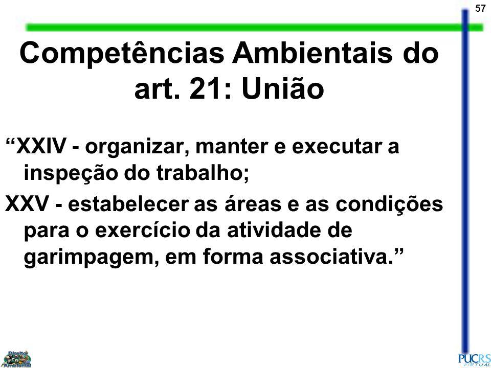 57 Competências Ambientais do art. 21: União XXIV - organizar, manter e executar a inspeção do trabalho; XXV - estabelecer as áreas e as condições par