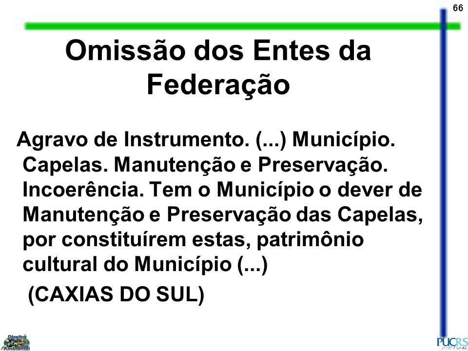 66 Omissão dos Entes da Federação Agravo de Instrumento. (...) Município. Capelas. Manutenção e Preservação. Incoerência. Tem o Município o dever de M