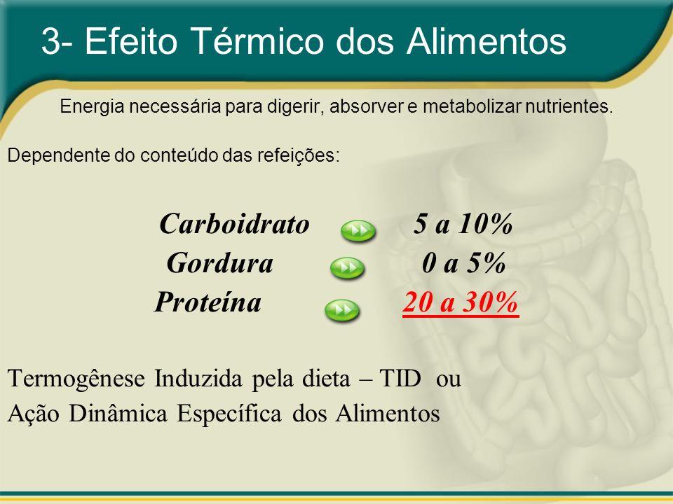 3- Efeito Térmico dos Alimentos Energia necessária para digerir, absorver e metabolizar nutrientes. Dependente do conteúdo das refeições: Carboidrato