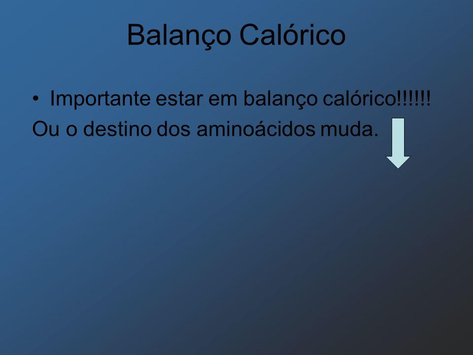 Balanço Calórico Importante estar em balanço calórico!!!!!! Ou o destino dos aminoácidos muda.