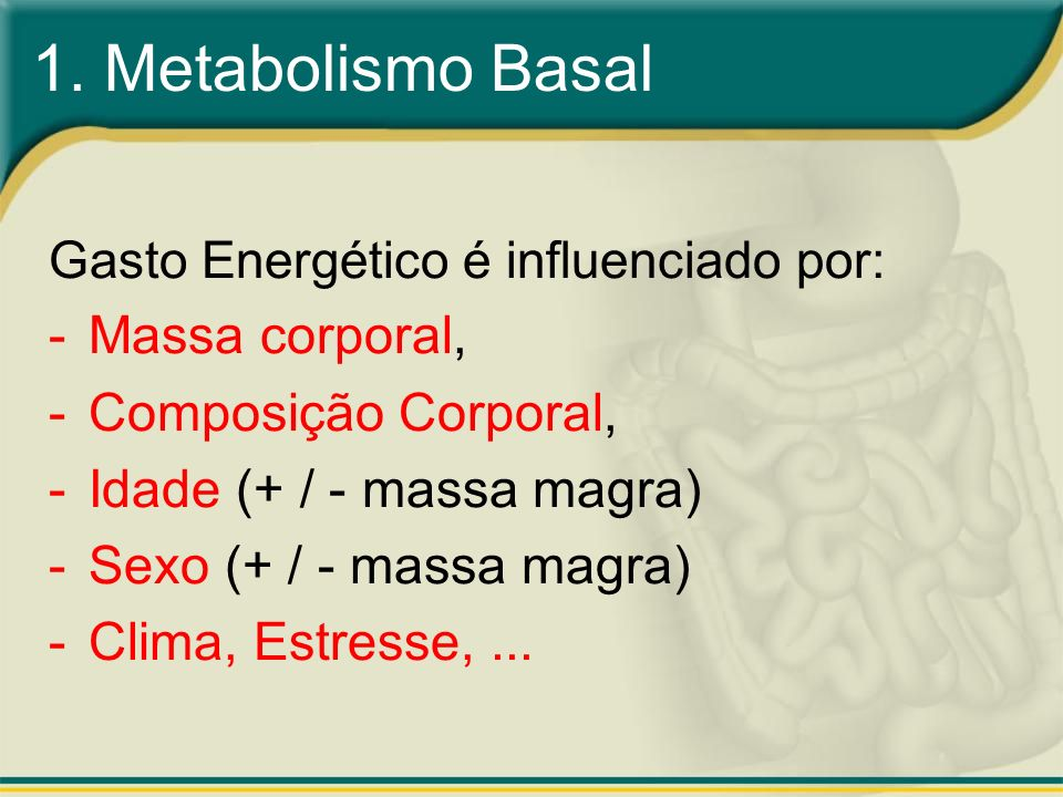 1. Metabolismo Basal Gasto Energético é influenciado por: -Massa corporal, -Composição Corporal, -Idade (+ / - massa magra) -Sexo (+ / - massa magra)