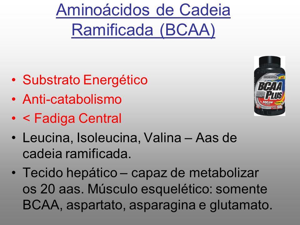 Aminoácidos de Cadeia Ramificada (BCAA) Substrato Energético Anti-catabolismo < Fadiga Central Leucina, Isoleucina, Valina – Aas de cadeia ramificada.