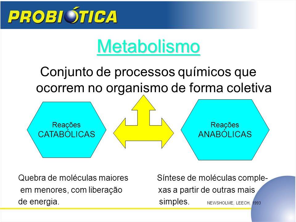 Metabolismo Conjunto de processos químicos que ocorrem no organismo de forma coletiva Quebra de moléculas maiores Síntese de moléculas comple- em meno