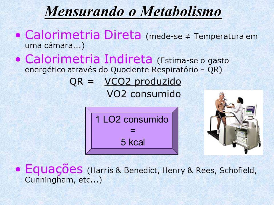 Mensurando o Metabolismo Calorimetria Direta (mede-se Temperatura em uma câmara...) Calorimetria Indireta (Estima-se o gasto energético através do Quo