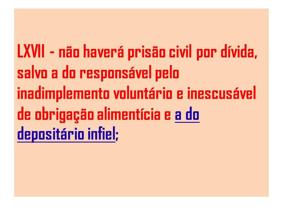 LXVII - não haverá prisão civil por dívida, salvo a do responsável pelo inadimplemento voluntário e inescusável de obrigação alimentícia e a do deposi