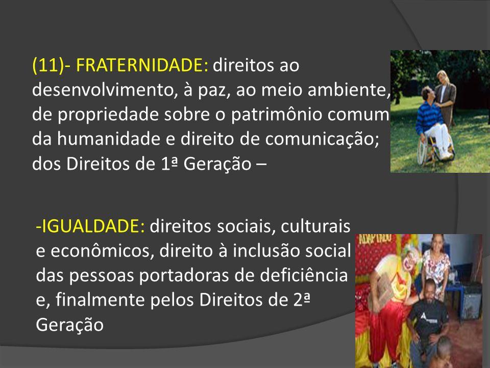 -IGUALDADE: direitos sociais, culturais e econômicos, direito à inclusão social das pessoas portadoras de deficiência e, finalmente pelos Direitos de