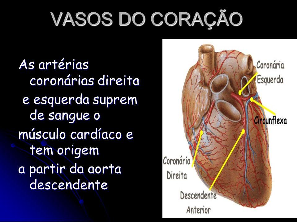 VASOS DO CORAÇÃO As artérias coronárias direita e esquerda suprem de sangue o e esquerda suprem de sangue o músculo cardíaco e tem origem a partir da