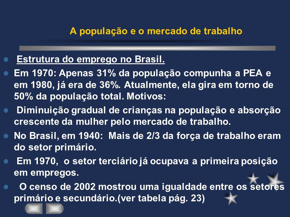 Estrutura do emprego no Brasil.