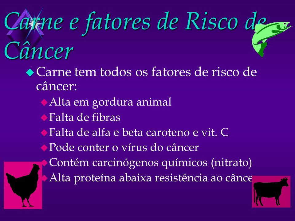 Carne e fatores de Risco de Câncer u Carne tem todos os fatores de risco de câncer: u Alta em gordura animal u Falta de fibras u Falta de alfa e beta caroteno e vit.