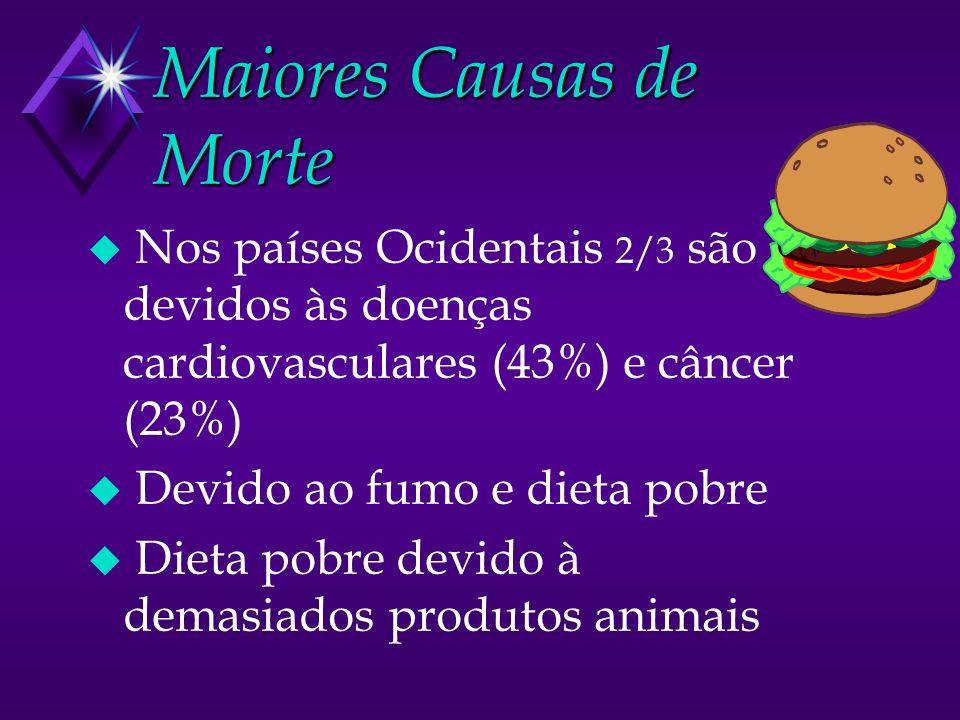 Maiores Causas de Morte u Nos países Ocidentais 2/3 são devidos às doenças cardiovasculares (43%) e câncer (23%) u Devido ao fumo e dieta pobre u Dieta pobre devido à demasiados produtos animais