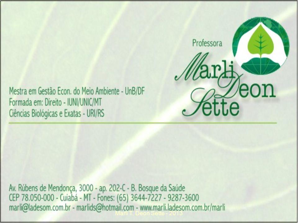 Marli T. Deon Sette - 2013