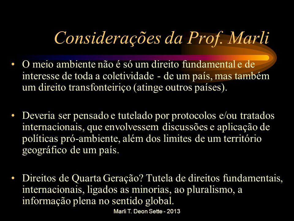 Marli T. Deon Sette - 2013 Considerações da Prof. Marli O meio ambiente não é só um direito fundamental e de interesse de toda a coletividade - de um