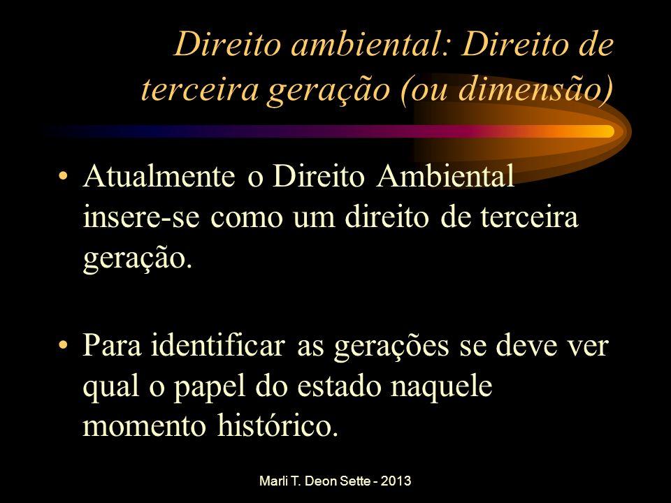 Marli T. Deon Sette - 2013 Direito ambiental: Direito de terceira geração (ou dimensão) Atualmente o Direito Ambiental insere-se como um direito de te