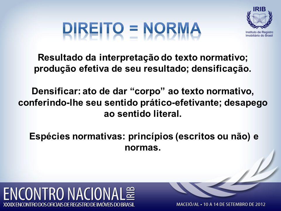 Resultado da interpretação do texto normativo; produção efetiva de seu resultado; densificação.
