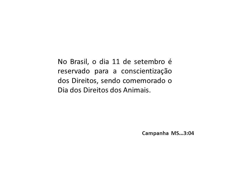 No Brasil, o dia 11 de setembro é reservado para a conscientização dos Direitos, sendo comemorado o Dia dos Direitos dos Animais. Campanha MS...3:04