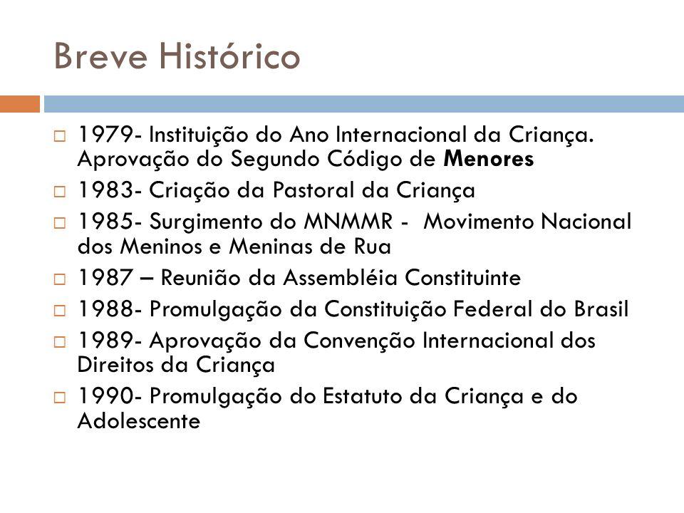 Breve Histórico 1979- Instituição do Ano Internacional da Criança. Aprovação do Segundo Código de Menores 1983- Criação da Pastoral da Criança 1985- S