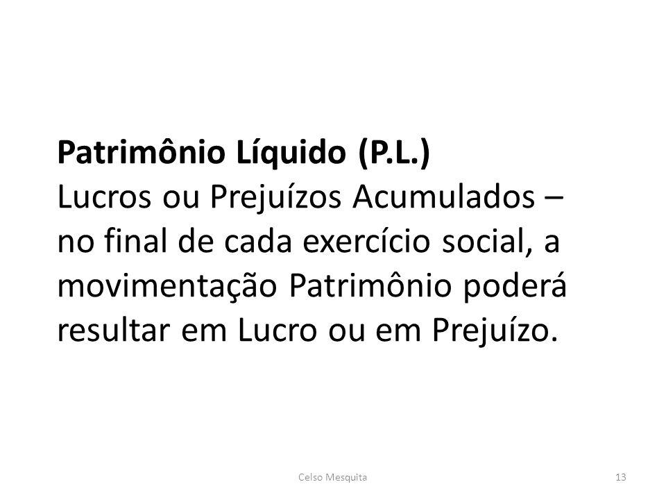 Patrimônio Líquido (P.L.) Lucros ou Prejuízos Acumulados – no final de cada exercício social, a movimentação Patrimônio poderá resultar em Lucro ou em Prejuízo.