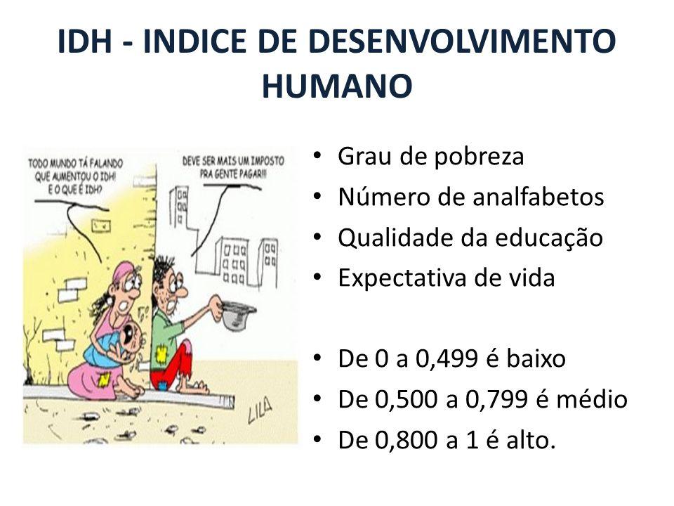 IDH - INDICE DE DESENVOLVIMENTO HUMANO Grau de pobreza Número de analfabetos Qualidade da educação Expectativa de vida De 0 a 0,499 é baixo De 0,500 a