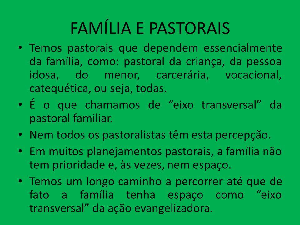 FAMÍLIA E PASTORAIS Temos pastorais que dependem essencialmente da família, como: pastoral da criança, da pessoa idosa, do menor, carcerária, vocacion