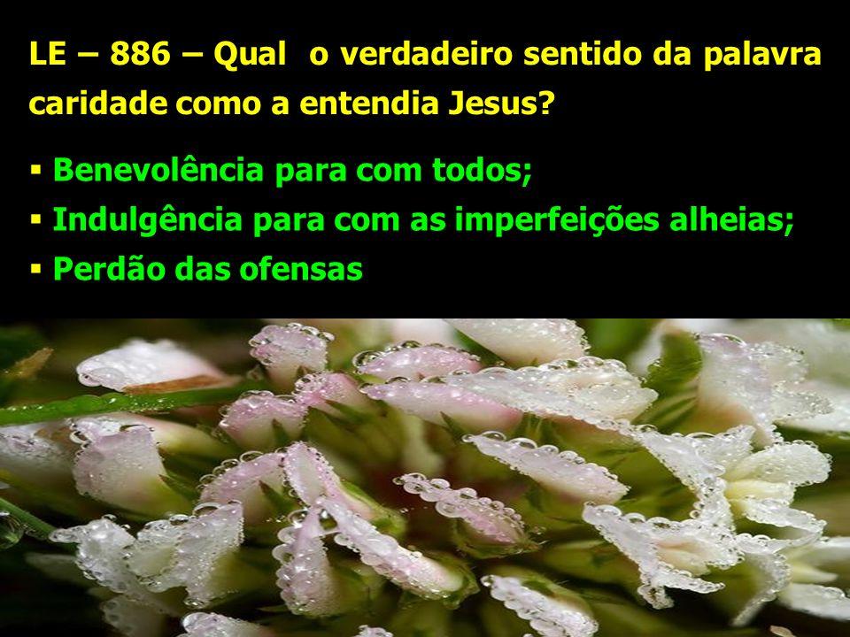 LE – 886 – Qual o verdadeiro sentido da palavra caridade como a entendia Jesus? Benevolência para com todos; Indulgência para com as imperfeições alhe