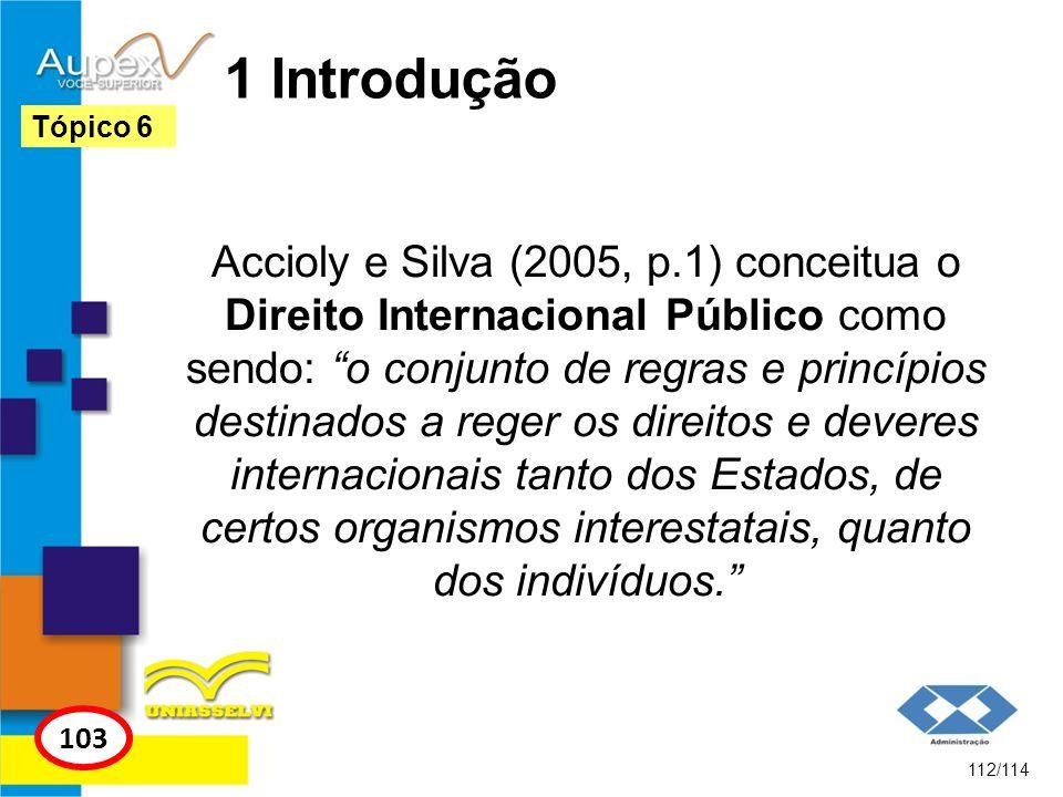 1 Introdução Accioly e Silva (2005, p.1) conceitua o Direito Internacional Público como sendo: o conjunto de regras e princípios destinados a reger os