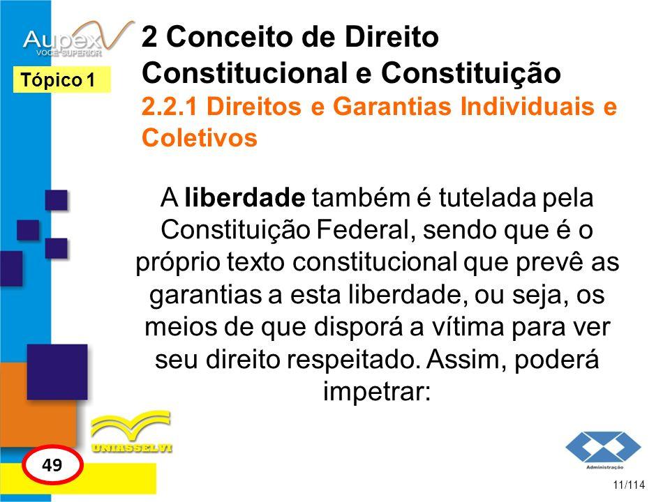 2 Conceito de Direito Constitucional e Constituição 2.2.1 Direitos e Garantias Individuais e Coletivos A liberdade também é tutelada pela Constituição