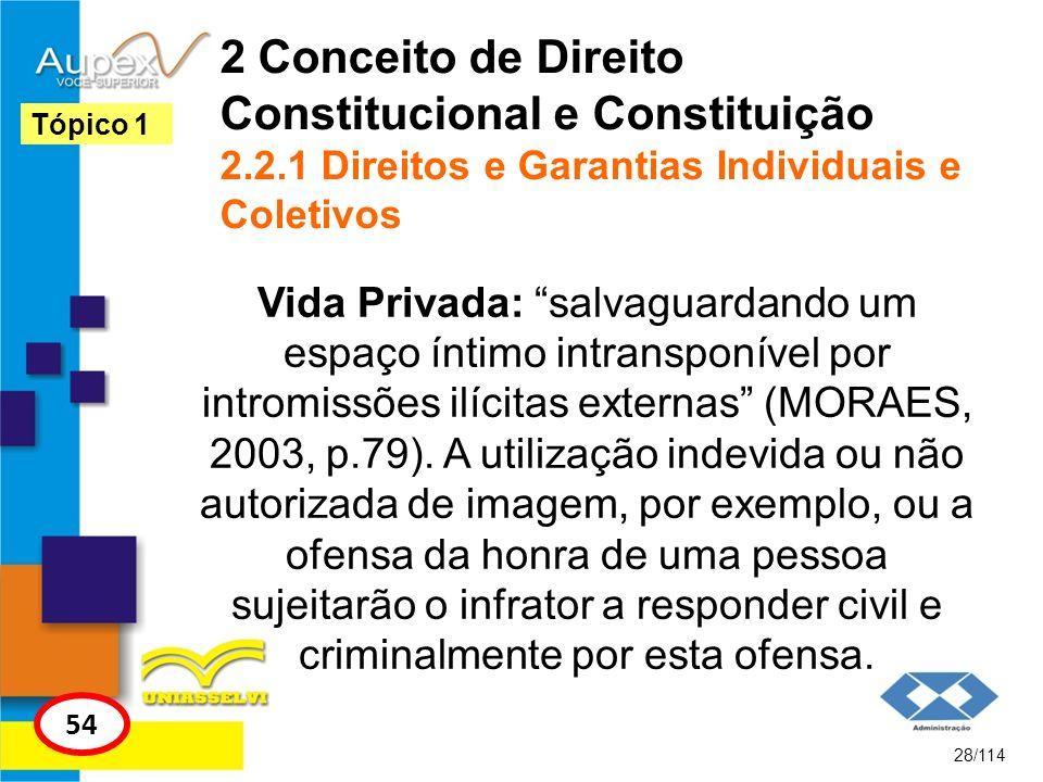 2 Conceito de Direito Constitucional e Constituição 2.2.1 Direitos e Garantias Individuais e Coletivos Vida Privada: salvaguardando um espaço íntimo i