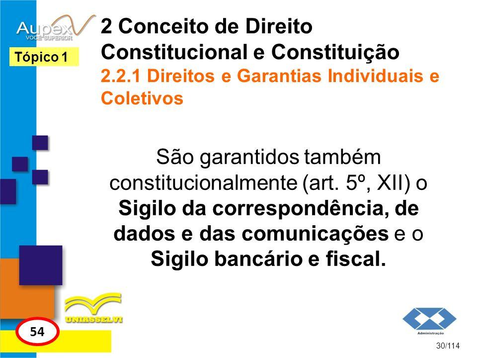 2 Conceito de Direito Constitucional e Constituição 2.2.1 Direitos e Garantias Individuais e Coletivos São garantidos também constitucionalmente (art.