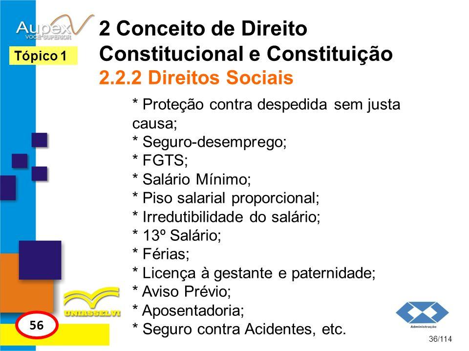 2 Conceito de Direito Constitucional e Constituição 2.2.2 Direitos Sociais * Proteção contra despedida sem justa causa; * Seguro-desemprego; * FGTS; *
