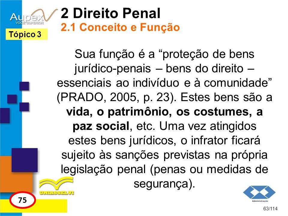2 Direito Penal 2.1 Conceito e Função Sua função é a proteção de bens jurídico-penais – bens do direito – essenciais ao indivíduo e à comunidade (PRAD