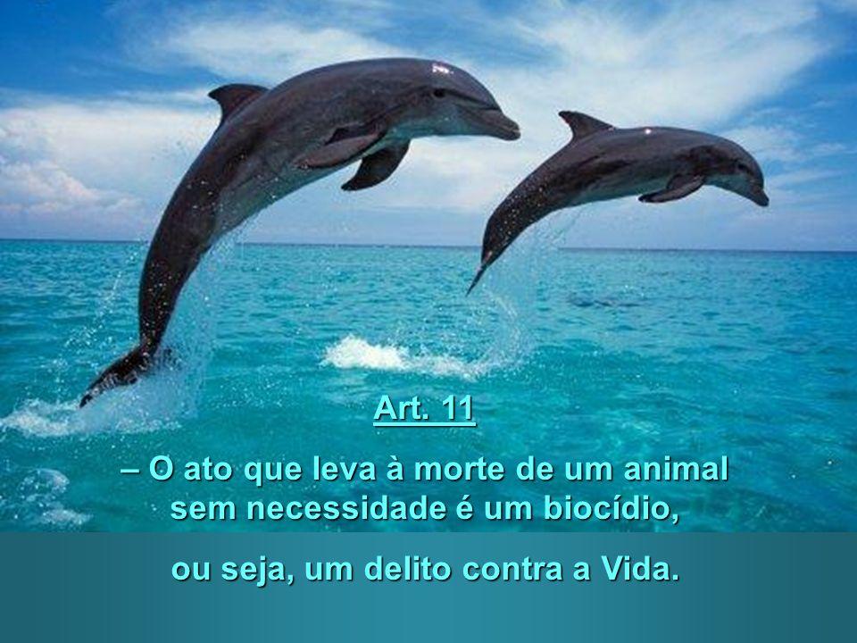 Art. 10 – Nenhum animal deve ser usado para divertimento do homem. A exibição dos animais e os espetáculos que utilizem animais são incompatíveis com