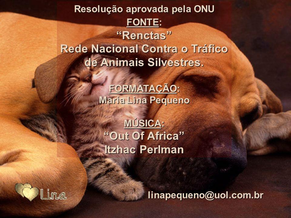 Art. 14 – As associações de proteção e de salvaguarda dos animais devem ter uma representação junto ao governo. Os direitos dos animais devem ser defe