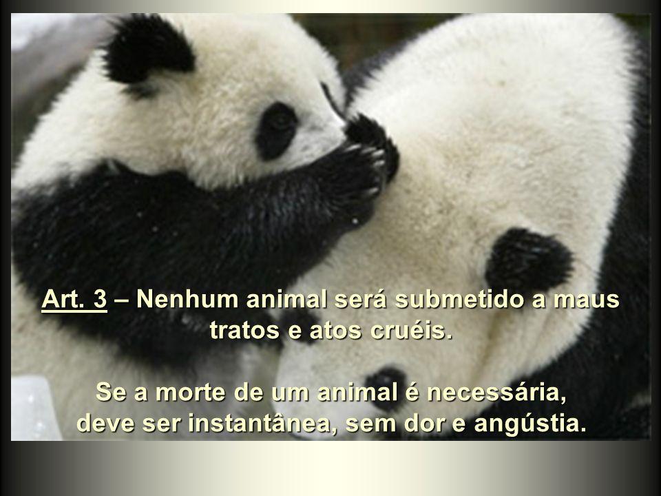 ...Ele tem o dever de colocar sua consciência a serviço de outros animais. Cada animal tem o direito à consideração e à proteção do homem.