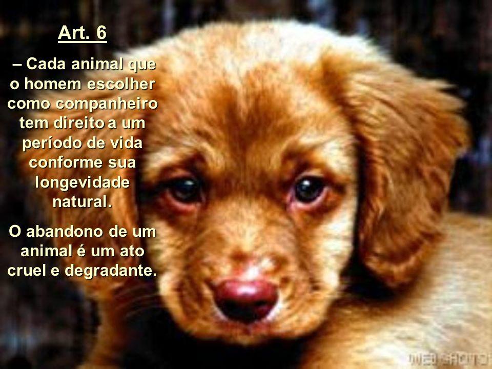 Art.5 – Cada animal pertencente a uma espécie que vive habitualmente no ambiente do homem tem o direito de viver e crescer segundo o ritmo e as condiç