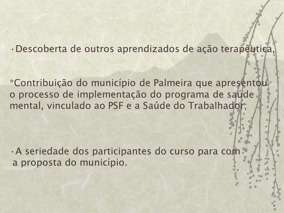 Descoberta de outros aprendizados de ação terapêutica, *Contribuição do município de Palmeira que apresentou o processo de implementação do programa d