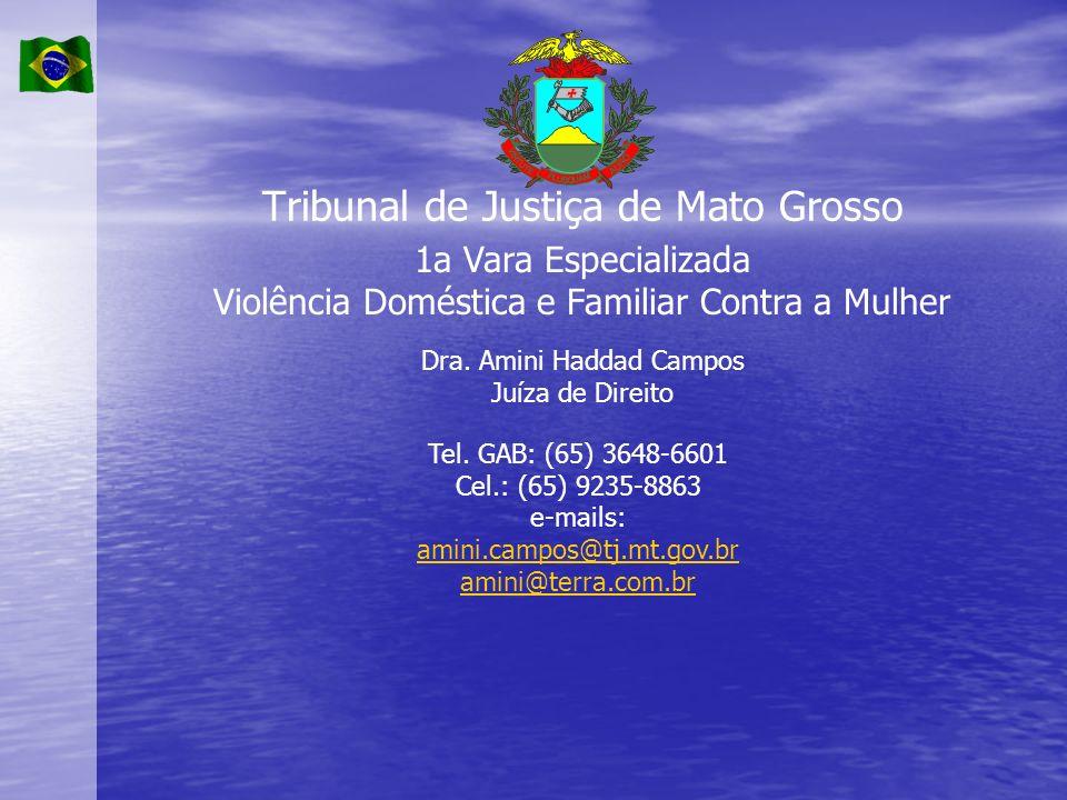 Tribunal de Justiça de Mato Grosso 1a Vara Especializada Violência Doméstica e Familiar Contra a Mulher Dra. Amini Haddad Campos Juíza de Direito Tel.