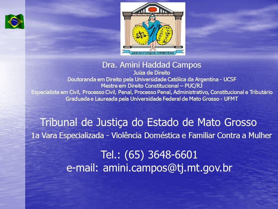 1a Vara Especializada - Violência Doméstica e Familiar Contra a Mulher Dra. Amini Haddad Campos Juíza de Direito Doutoranda em Direito pela Universida