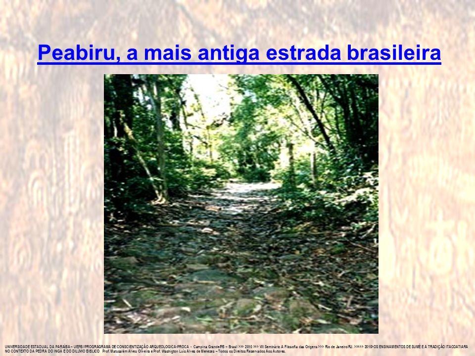 UNIVERSIDADE ESTADUAL DA PARAÍBA – UEPB//PROGRAGRAMA DE CONSCIENTIZAÇÃO ARQUEOLOGICA-PROCA - Campina Grande/PB – Brasil >>> 2010 >>> VII Seminário A F