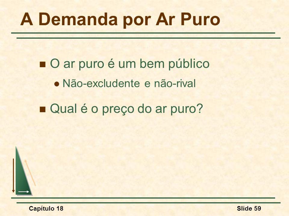 Capítulo 18Slide 59 A Demanda por Ar Puro O ar puro é um bem público Não-excludente e não-rival Qual é o preço do ar puro?
