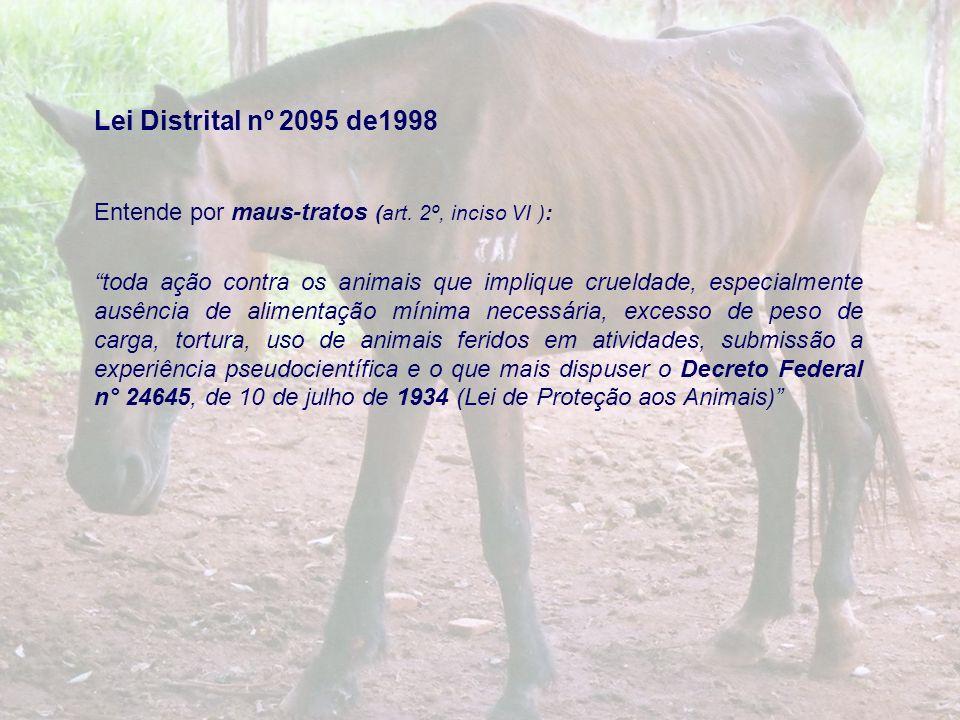 Lei Distrital nº 2095 de1998 Entende por maus-tratos (art. 2º, inciso VI ): toda ação contra os animais que implique crueldade, especialmente ausência