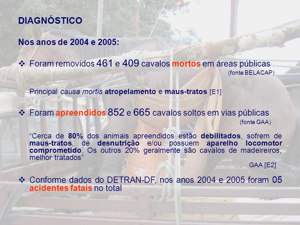 DIAGNÓSTICO Nos anos de 2004 e 2005: Foram removidos 461 e 409 cavalos mortos em áreas públicas (fonte BELACAP) Principal causa mortis atropelamento e