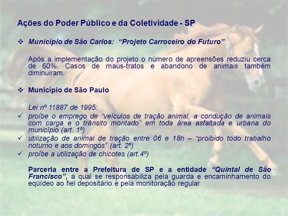 Ações do Poder Público e da Coletividade - SP Município de São Carlos: Projeto Carroceiro do Futuro Após a implementação do projeto o número de apreensões reduziu cerca de 60%.