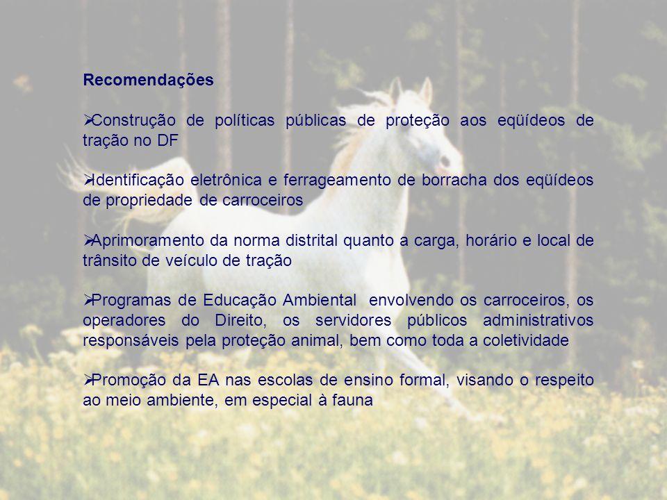 Recomendações Construção de políticas públicas de proteção aos eqüídeos de tração no DF Identificação eletrônica e ferrageamento de borracha dos eqüídeos de propriedade de carroceiros Aprimoramento da norma distrital quanto a carga, horário e local de trânsito de veículo de tração Programas de Educação Ambiental envolvendo os carroceiros, os operadores do Direito, os servidores públicos administrativos responsáveis pela proteção animal, bem como toda a coletividade Promoção da EA nas escolas de ensino formal, visando o respeito ao meio ambiente, em especial à fauna