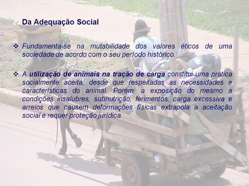 Da Adequação Social Fundamenta-se na mutabilidade dos valores éticos de uma sociedade de acordo com o seu período histórico. A utilização de animais n