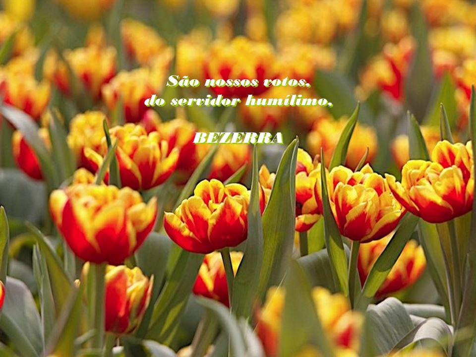 O dia amanhece, prenunciando o sol radiante em vossas vidas. Sejam o Amor, a Paz e a Concórdia vossas metas. Jesus vos espera. Que nada vos faça desvi