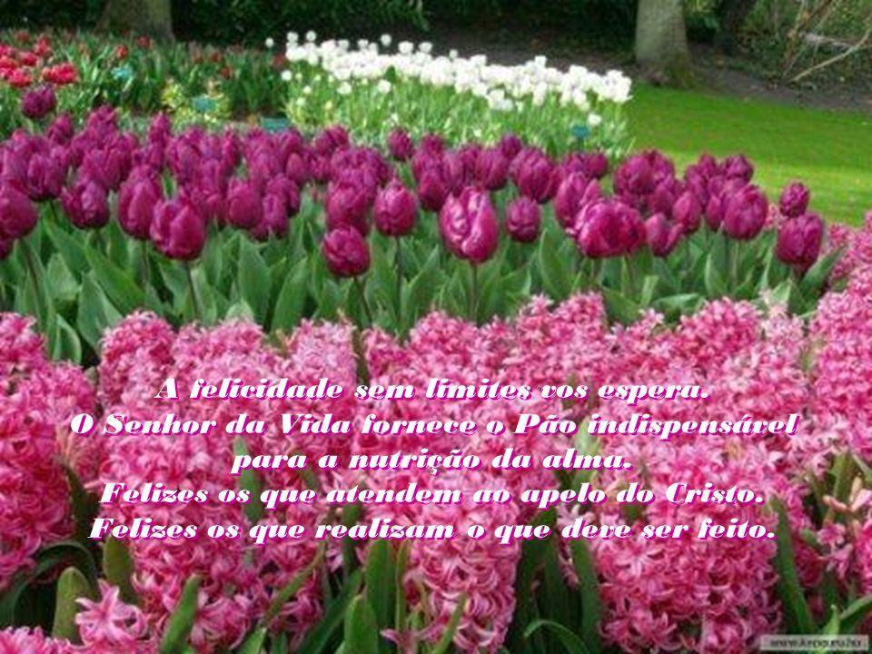 Nosso é o dever de servo consciente. Fomos despertados pelo convite do próprio Mestre. Não por privilégios, mas por necessidade premente.